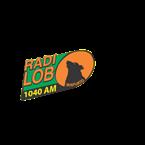 Radio Lobo Bajío 1040 AM Mexico, Irapuato