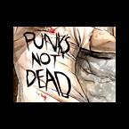 myRadio.ua Punk Ukraine, Vinnytsia