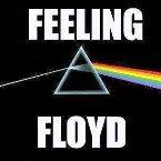 Feeling Floyd France