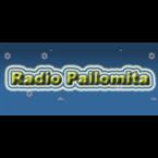 Radio Pallomita Netherlands, Hilversum